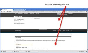 Page property interface of WebSphere Portal 8 related to managed pages feature